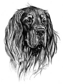 Gordon Setter Personalised Note Pad